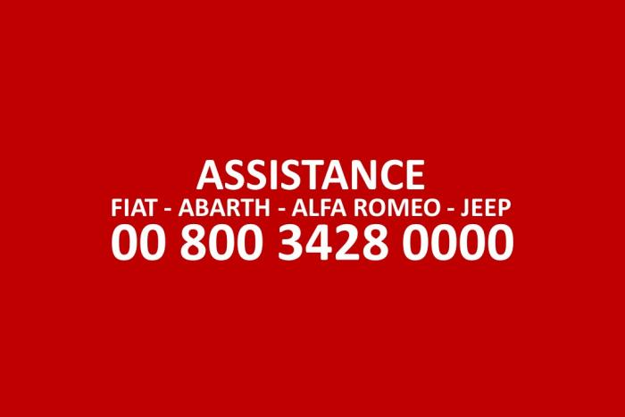 ASSISTANCE GROUPE FIAT